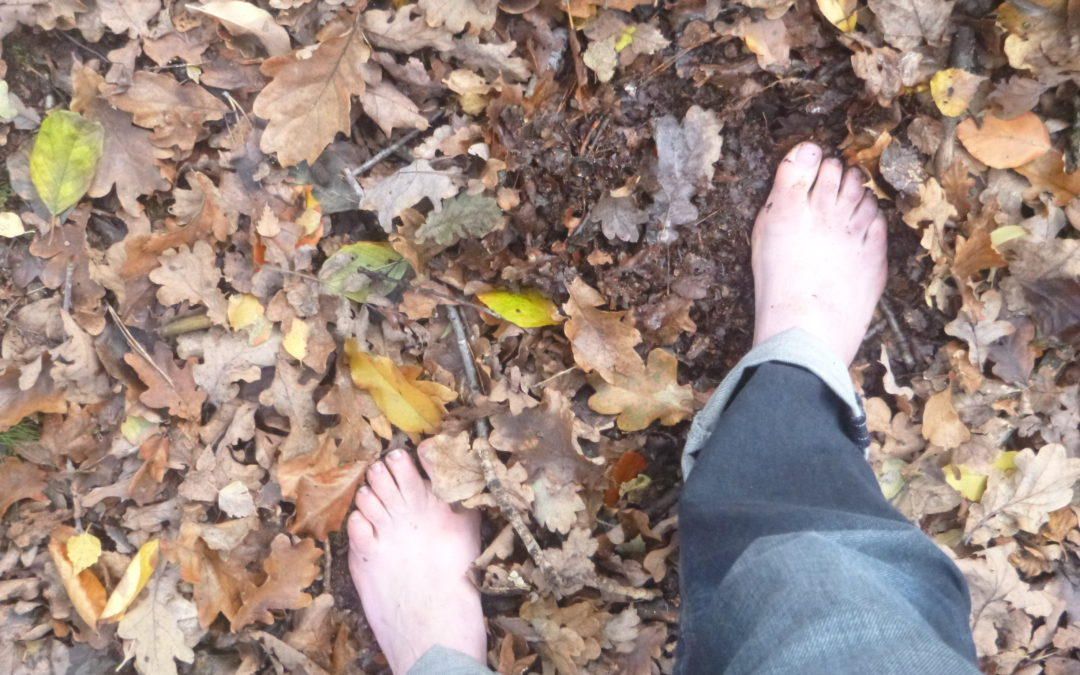Lessons from living barefoot