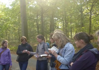 A taste of nature – Wild edible walk